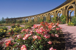 The Rose Garden includes a classical arched arbor with more than 60 varieties of roses climbing its sunny beams. From the Rose Garden, visitors can see the Italian Garden on the hill.