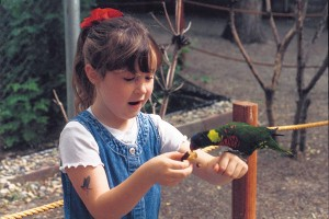 Tracy Aviary gives kids the chance to hand-feed colorful birds.