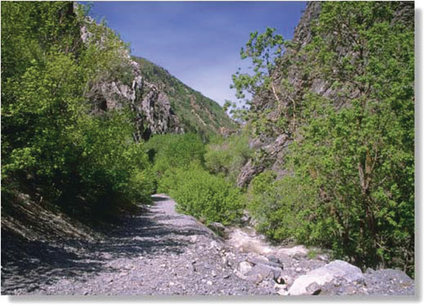 Some of the RAP tax could help improve Rock Canyon  Trail.