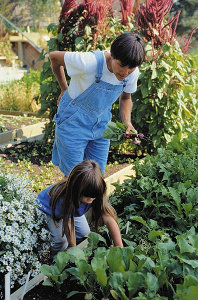 Gardening-Photo