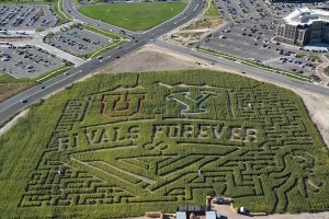 Cornbelly's corn maze has added colored chalk to this year's rivalry-themed maze. (Photo by Rebecca Lane)