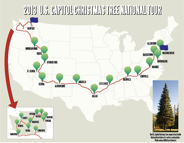 National Christmas Tree 2017