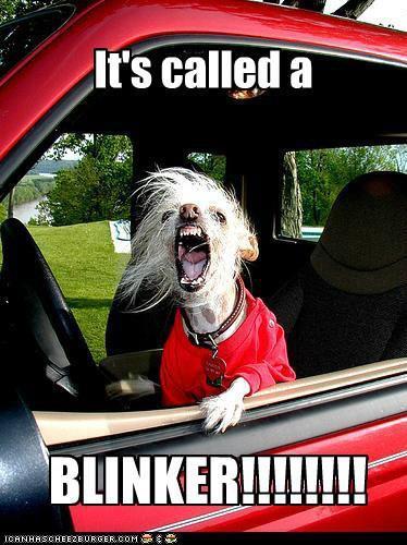 It's called a blinker!
