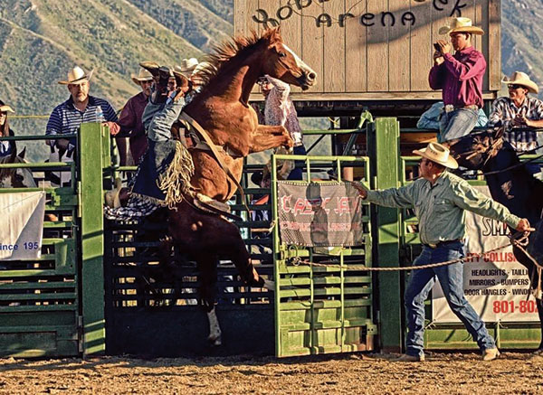 """City celebrations get off to a good """"art"""" with Springville's celebration June 7-14. One of the many events is a rodeo."""