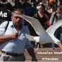 Seagull swipes ice cream