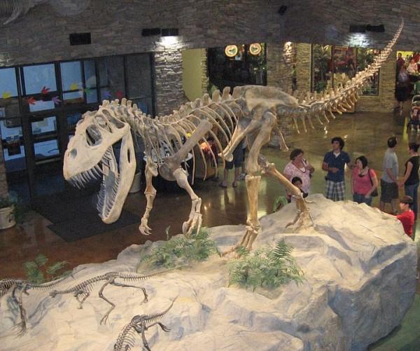 719px-Museum_AL_dinosaur