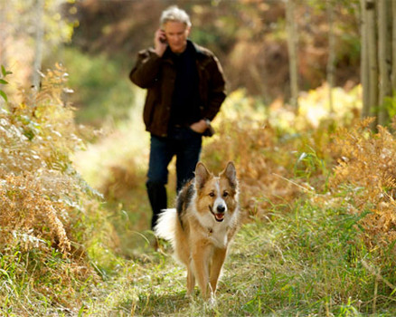 """Kevin Kline and his canine companion walk through Provo Canyon, which doubled for the High Rockies in """"Darling Companion."""" (Photo courtesy of Sony Pictures Classics)"""