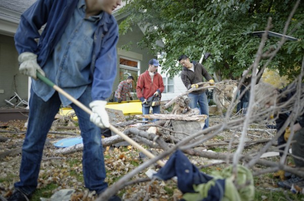 cleaning-up-tree-limbs-1176686-gallery