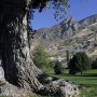 Bicentennial Park in south Provo is one of the parks that would benefit from a RAP tax. (Photo courtesy Provo city)
