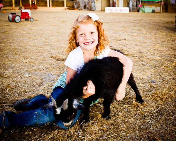 Stop by Hee-Haw Farms for an adventure