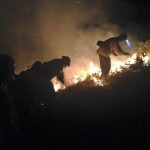 UV crime: Fire on Y Mountain, sentencing for animal cruelty