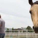 ClearMindEquine saddles up recovering addicts and abuse victims to take back life's reins