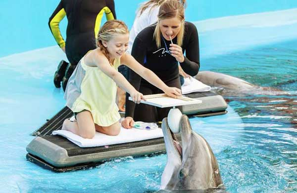 You can become a dolphin trainer for the day at Siegfried & Roy's Secret Garden and Dolphin Habitat. (Photo courtesy Siegfried & Roy's Secret Garden and Dolphin Habitat)