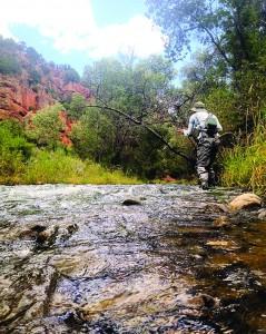 Dave Blackhurst often fishes during his lunch break. (Photo by Dave Blackhurst)