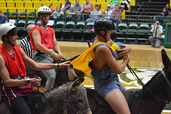 Donkey basketball players make their way down the court on Wednesday night. (Photo by Matt Bennett)