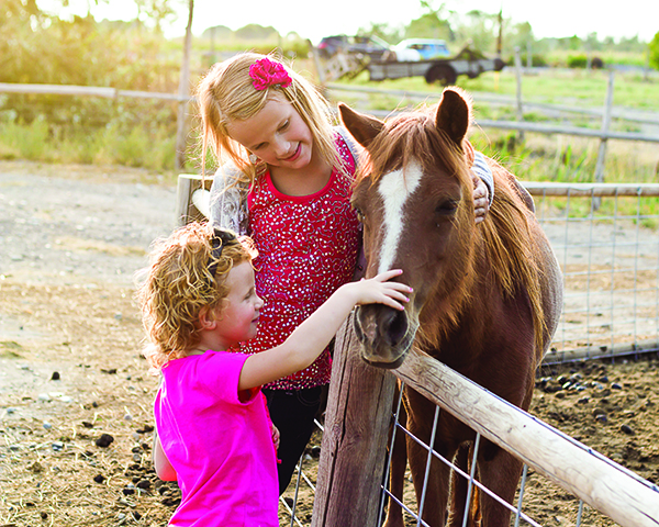 Hee Haw Farms reopens in the spring, which includes its petting farm. (Photo courtesy Hee Haw Farms)