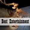 Best Entertainment