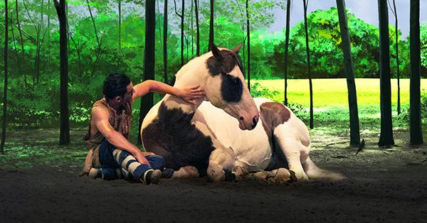Cavalia horse
