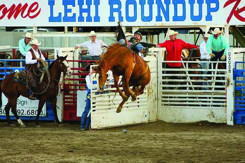 Lehi Rodeo