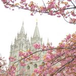 LDS Church will now allow single Mormon men over 31, divorcees to serve as ordinance workers